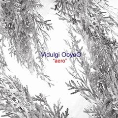 Vidulgi OoyoO