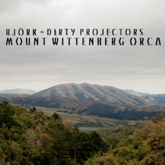 Bjork × Dirty Projectors