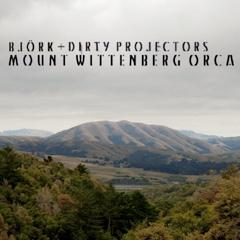 Bjork × Dirty Projectors