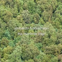 Oren Ambarchi & Thomas Brinkmann