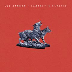 Lee Bannon